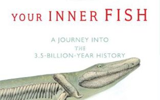 Educate and learn more international darwin day for Neil shubin your inner fish